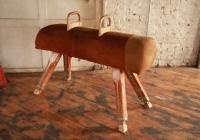 Vintage Pummel Horse